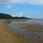 島を囲むように砂浜が続く