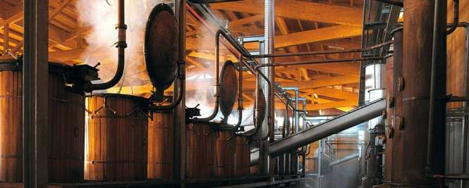 Grappa Nonino distillery
