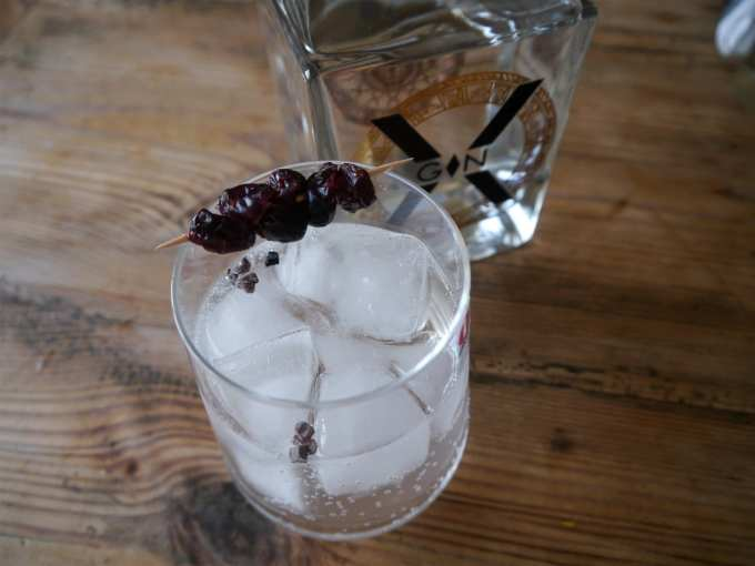 XGin with Chocolate tonic