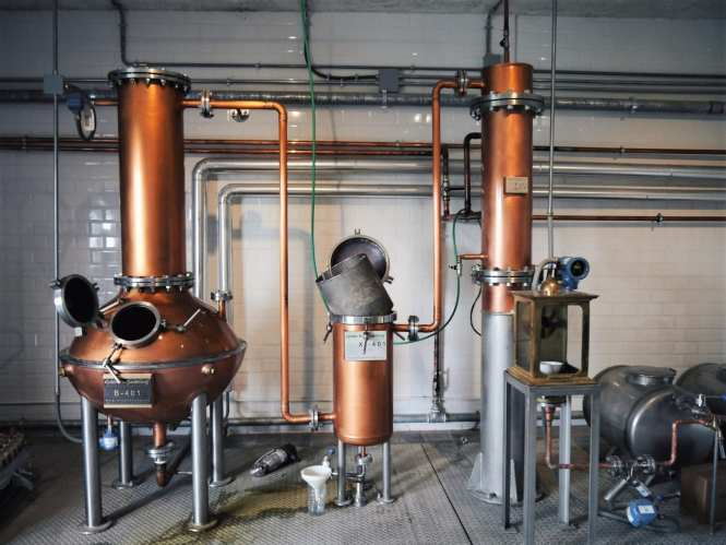 Gin distillery near Florence