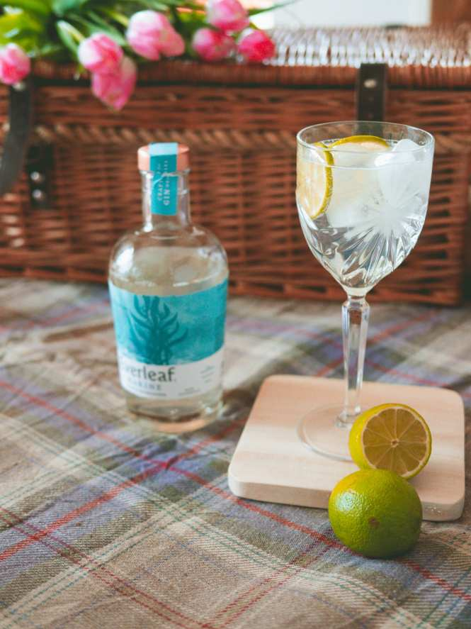 Everleaf non alcoholic spritz cocktail and picnic set up