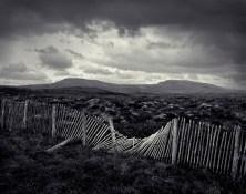 Joakim Eskildsen (c.1989-1994) The Fence