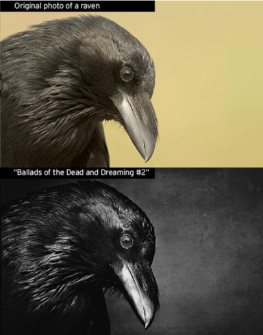 Comparison of Hansen original image of bird with Ong's monochrome version