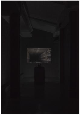 Matan Mittwoch (2013) Laterna Magika photo-screening; darkroom enlarger used as projector and 110x73x1cm translucent screening