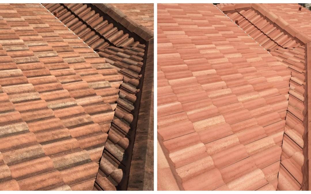 Roof Softwash B