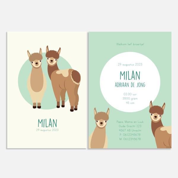 Geboortekaartje alpaca lama duo jongen ontwerp door lindy