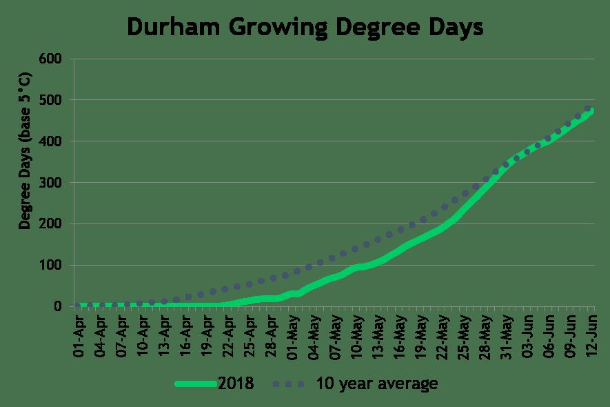 DurhamDD June18