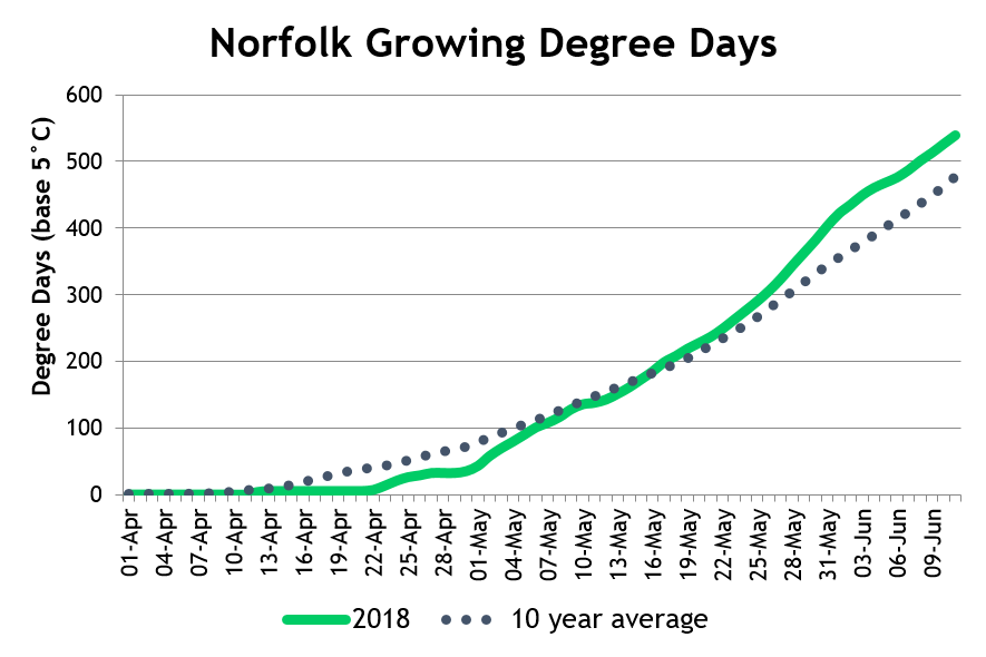 NorfolkDD June18
