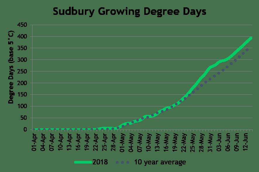 SudburyDD June18