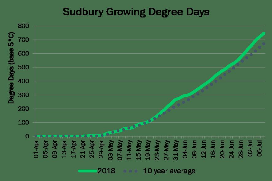 SudburyDD July8
