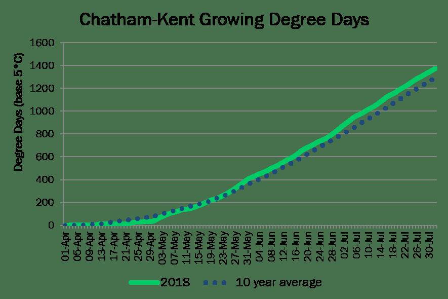 Chatham-KentDD August1