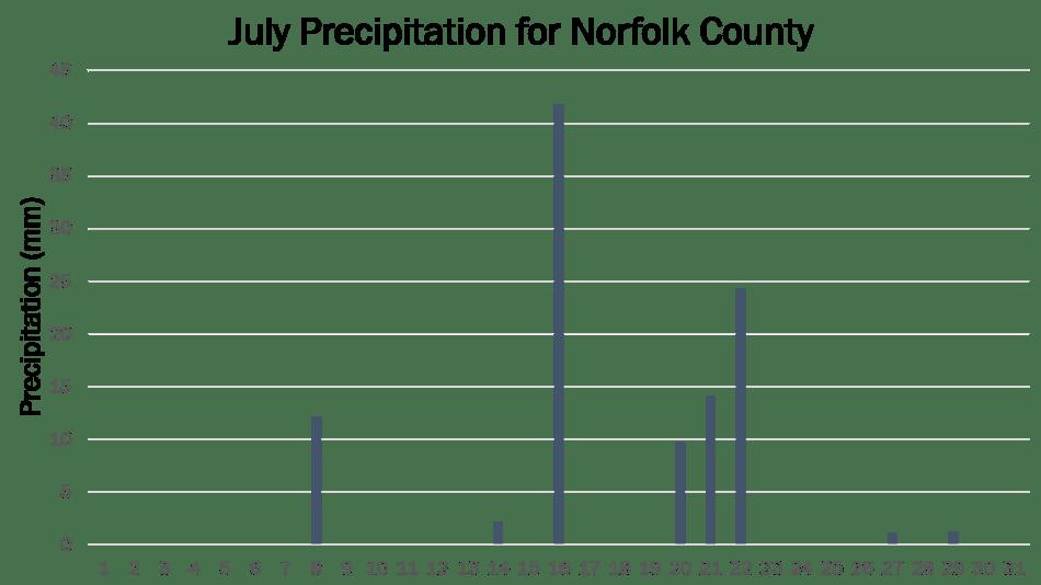 Norfolk JP 2