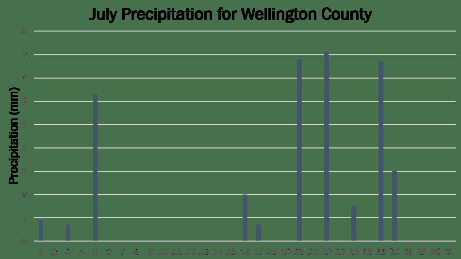 Wellington JP 2