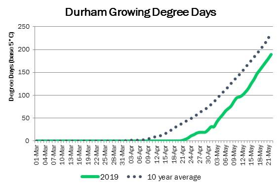 DurhamDDMay22