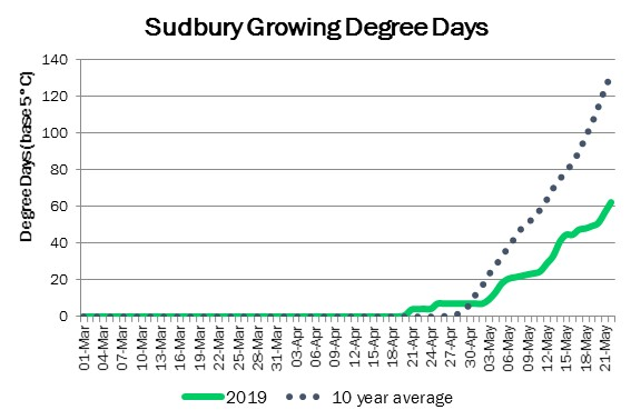 SudburyDDMay22