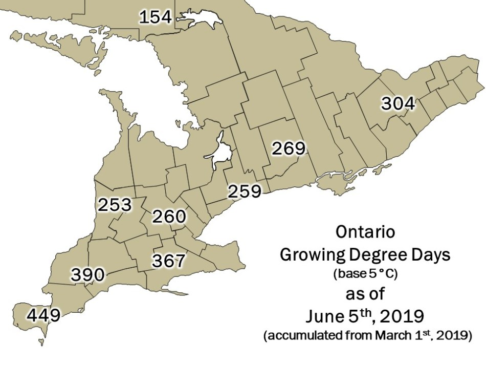 Ontario DD Map - June 06