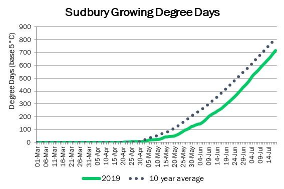 SudburyDDJuly19