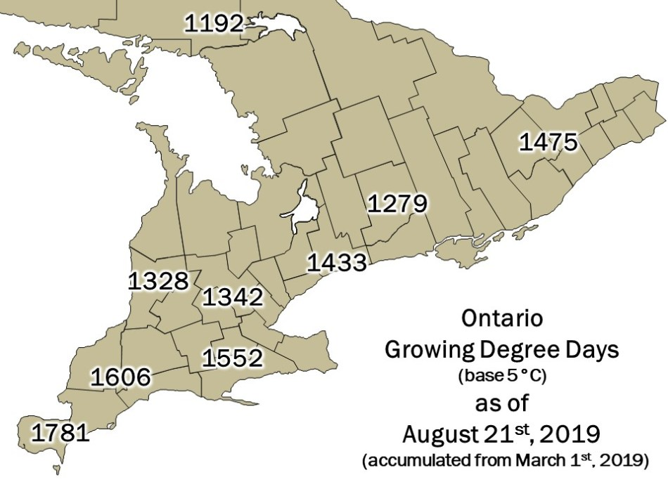 Ontario DD Map - August 22