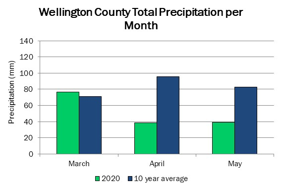 wellington_precip_may21_2020