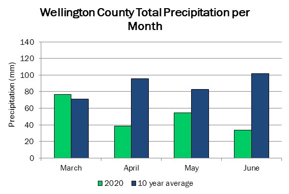 wellington_precip_jun11