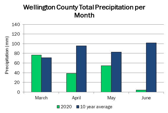 wellington_precip_jun4