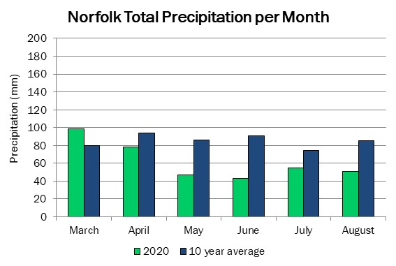 norfolk_precip_aug20