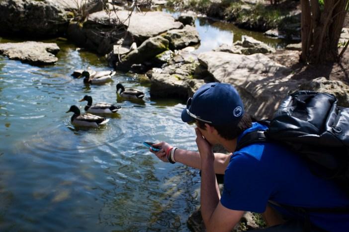 David The Duck Whisperer (1 of 4)
