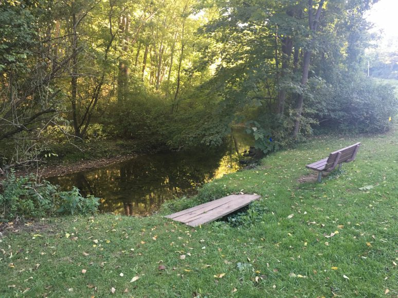 Take a minute out from your day to unwind by the creek
