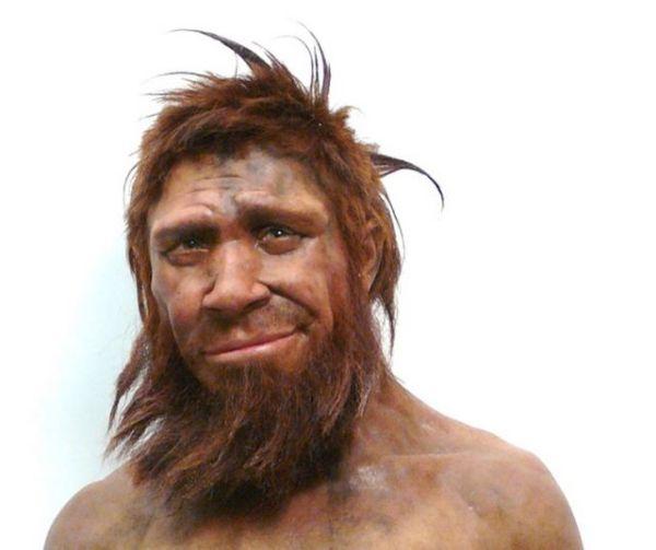 Homo sapiens - arstechnica.net