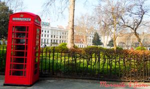 Une phone box et des feuilles