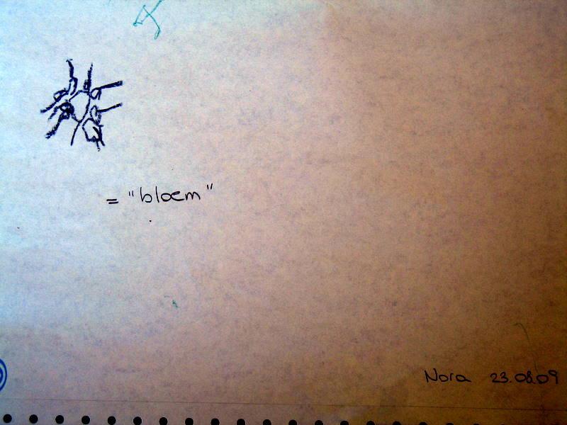 23.08.09 bloem