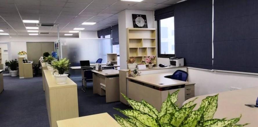 New office 02