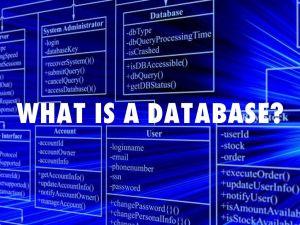 Cơ sở dữ liệu là gì?