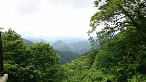 鬼嶽稲荷神社からの新緑の景色