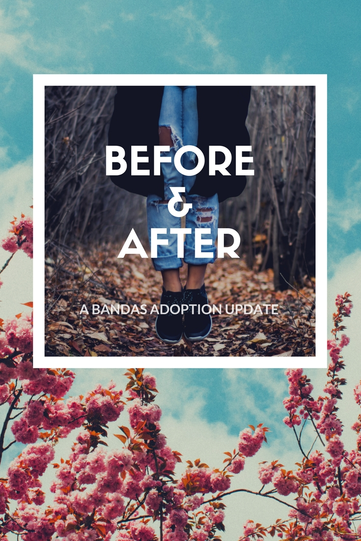 HOW TO START THE ADOPTION PROCESS