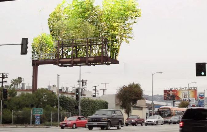 billboard trees