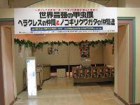 昆虫イベント 江釣子ショッピングセンターパル02
