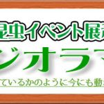 ジオラマ標本ロゴ