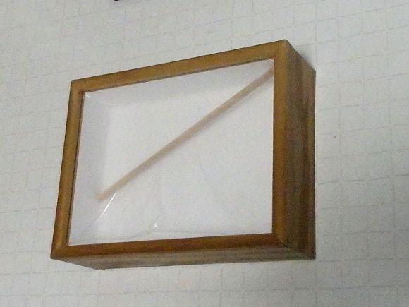 木製標本(中)箱 サイズ