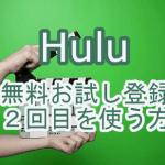 Hulu-try