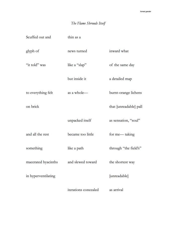 Forrest-Gander-The-Flame-Shrouds-Itself-Ooteoote-Vertaallab