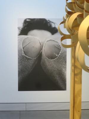 Francois Michel Résidence Terrestre detail foto Coudes en schaafkrullen