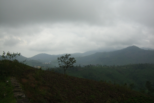 View Ooty Properties (4/6)