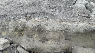 Zandlagen bij Folkstone