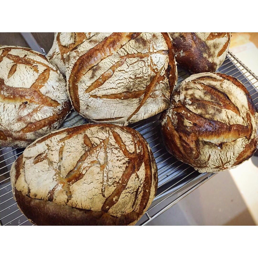 パンドロデヴ | OPAN オパン|東京 笹塚のパン屋