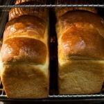 オパンの山型食パン、角型食パン(2017.07.21)