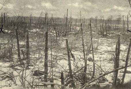 Feldpostkarte Erster Weltkrieg Unbekannt