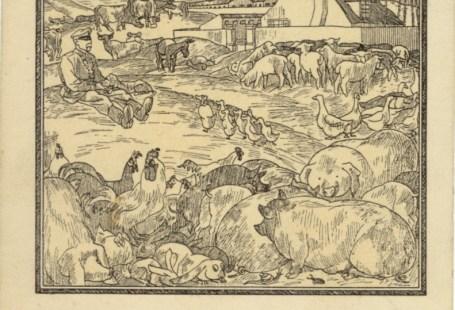 Feldpostkarte Erster Weltkrieg Liller Kriegszeitung