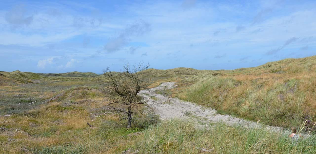 Opbevaring Af Campingvogn I Nordjylland Samt Bil Og Bad