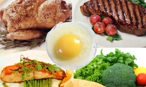 ¿Qué es la proteína? Su función en el cuerpo a través de la dieta